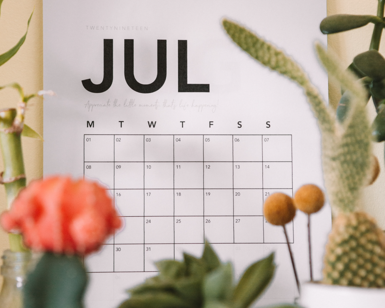 CM企業ランキング(2020年7月)